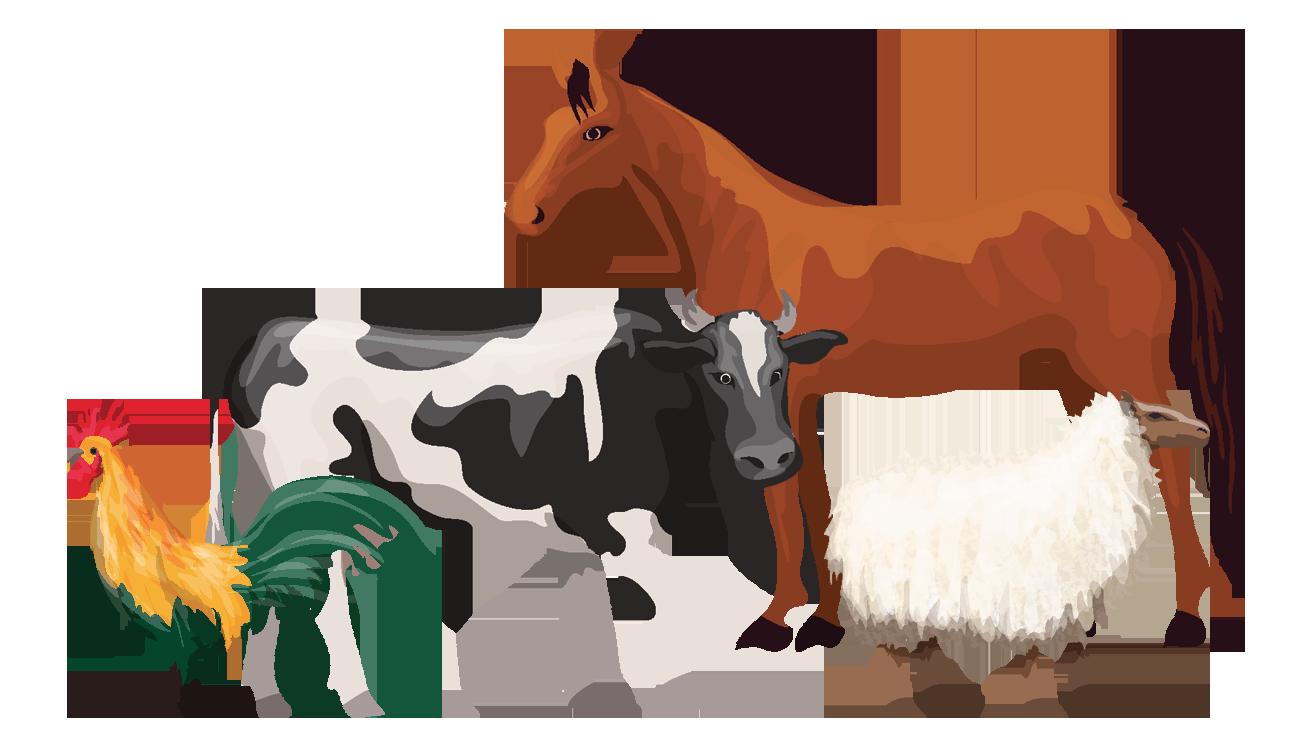 Recinti elettrici per bovini